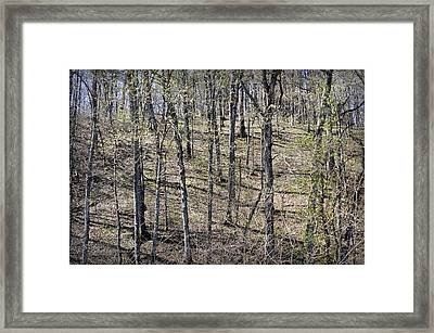 First Green On The Bluffs Framed Print
