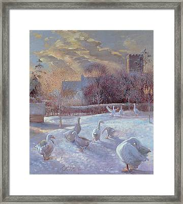 First Light Framed Print by Timothy Easton