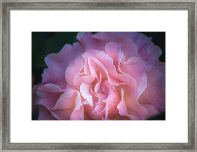 Framed Print featuring the photograph First Light by Patricia Babbitt