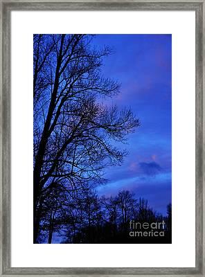 First Light Framed Print by Thomas R Fletcher