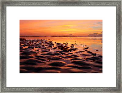 First Light  Framed Print by William Love