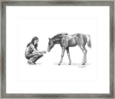 First Love Girl With Horse Foal Framed Print by Renee Forth-Fukumoto