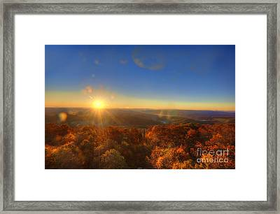 First Morning Light Striking Top Of Trees Framed Print by Dan Friend