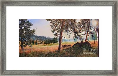 First Nation Meadow Framed Print