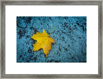 First Of Its Kind Framed Print