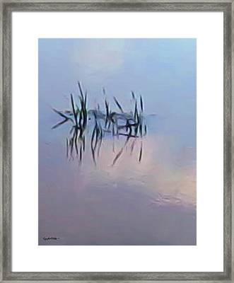 First Reeds Of Spring Framed Print by Spyder Webb