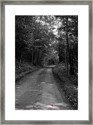 First Signs Of Fall On Rondaxe Road Framed Print
