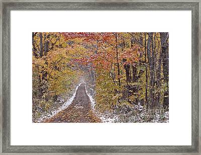Framed Print featuring the photograph First Snow by Alan L Graham