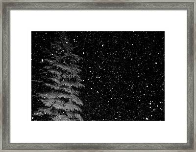 Framed Print featuring the photograph First Snow by Denise Beverly