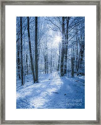 First Snow Framed Print by Diane Diederich
