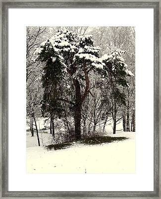 First Snow Framed Print by Henryk Gorecki