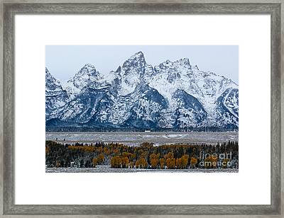 First Snow Framed Print by Lynn Sprowl