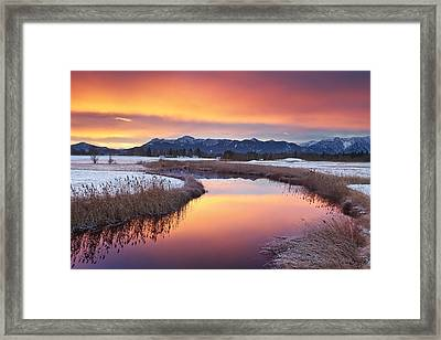 First Snow Framed Print by Michael Breitung