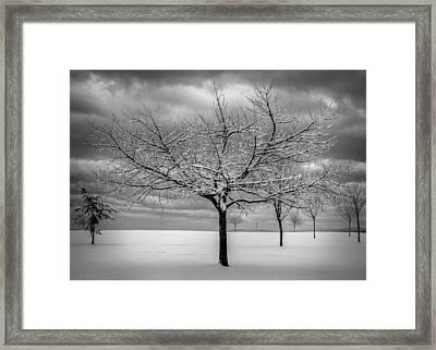 First Snow Framed Print by Randy Hall