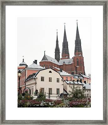 First Snow Framed Print by Torbjorn Swenelius