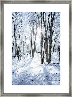 First Snowfall Framed Print by Diane Diederich