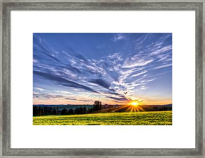 First Summer Day Framed Print