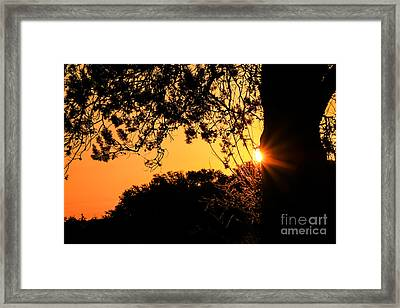 First Sunrise Of A New Year Framed Print