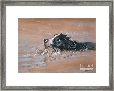First Swim Framed Print by John Silver