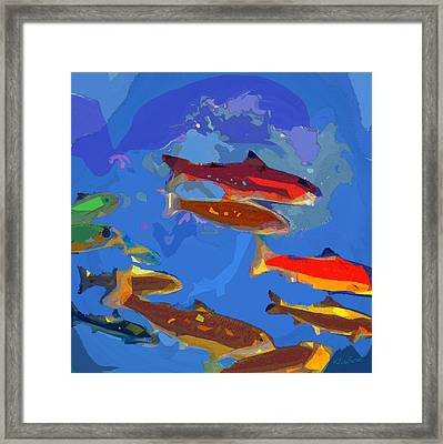 Fish 1 Framed Print
