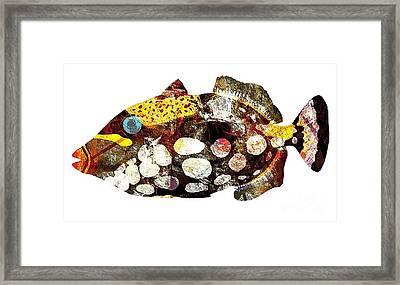 Fish 504-11-13 Marucii Framed Print by Marek Lutek