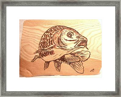 Fish Framed Print by Art  Pyrography