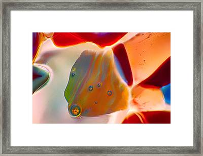 Fish Blowing Bubbles Framed Print by Omaste Witkowski