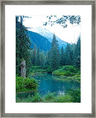Fish Creek In Tongass National Forest By Hyder-ak  Framed Print