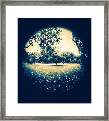 Fish Eye Park Framed Print by Lenny Carter