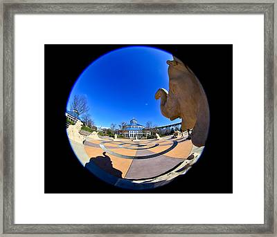 Fish Eye View Of Coolidge Park Framed Print by Tom and Pat Cory