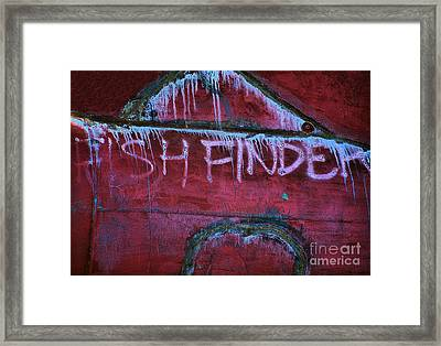 Fish Finder Framed Print by Lauren Leigh Hunter Fine Art Photography