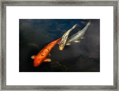 Fish - Fishing For A Compliment  Framed Print by Mike Savad