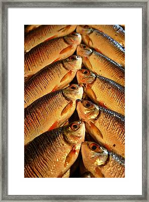 Framed Print featuring the photograph Fish For Sale by Henry Kowalski