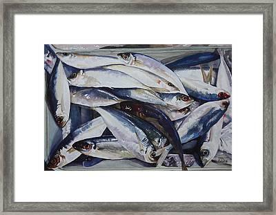 Fish Framed Print by Helal Uddin