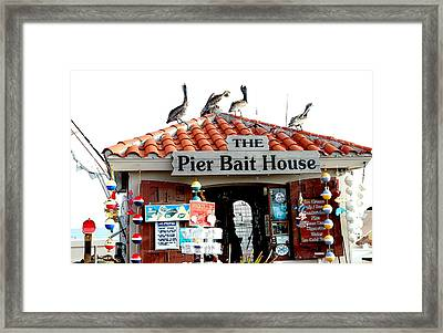 Fish House Framed Print by  George Griffiths