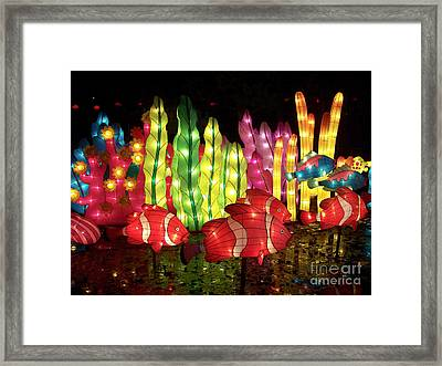 Fish In The Lagoon Framed Print