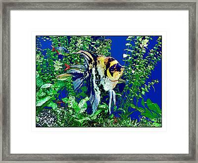 Fish Life Framed Print by Joan  Minchak