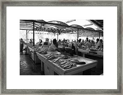 Fish Market In Dubai Framed Print by Maeve O Connell