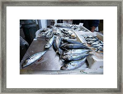 Fish Market In Porto Framed Print by Sinclair Stammers