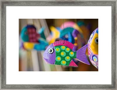Fish Of Color Framed Print