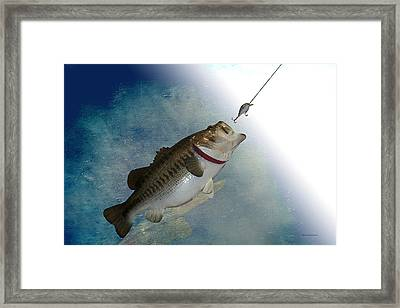 Fish On Framed Print by Thomas Woolworth