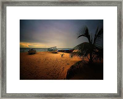 Fish Or Cut Bait Framed Print