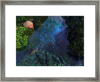 Fish Pond Framed Print by John Pangia