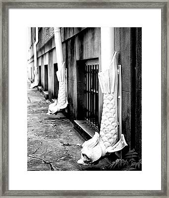 Go Fish Rainspouts Savannah Ga Framed Print