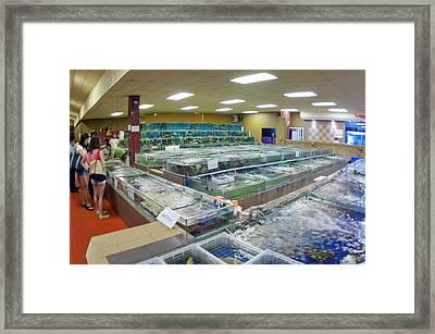 Fish Restaurant In Borneo Framed Print