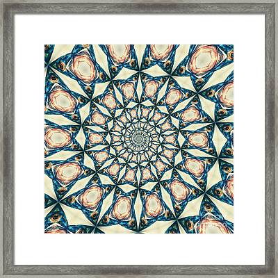 Fish Spiral Framed Print by Neil Overy
