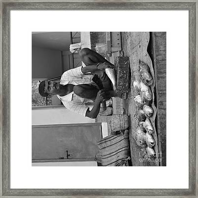 Fish Stall  Framed Print by Bobby Mandal