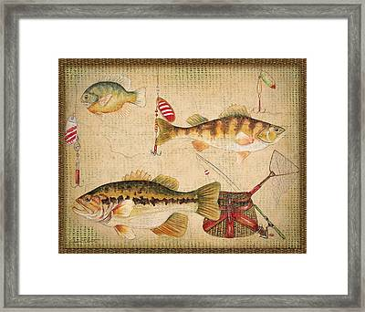 Fish Trio-a-basket Weave Border Framed Print by Jean Plout