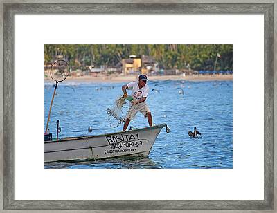 Fisher Man Throwing Net Framed Print by Camilla Fuchs