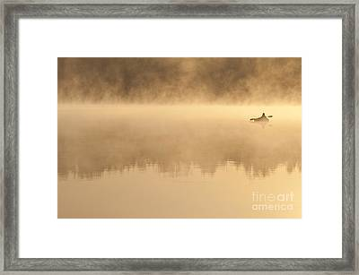 Fisherman In Kayak, Lake Cassidy Framed Print by Jim Corwin